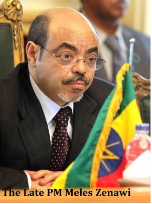Phd dissertation assistance zenawi