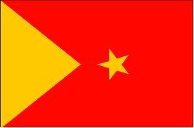 TPLF flag