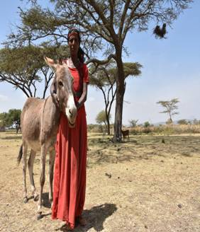 Samuna - Ethiopian cattle farmer credit The Donkey Sanctuary  ii.jpg